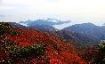 the fall foliage peaks at Hanryeo Haesang National Park